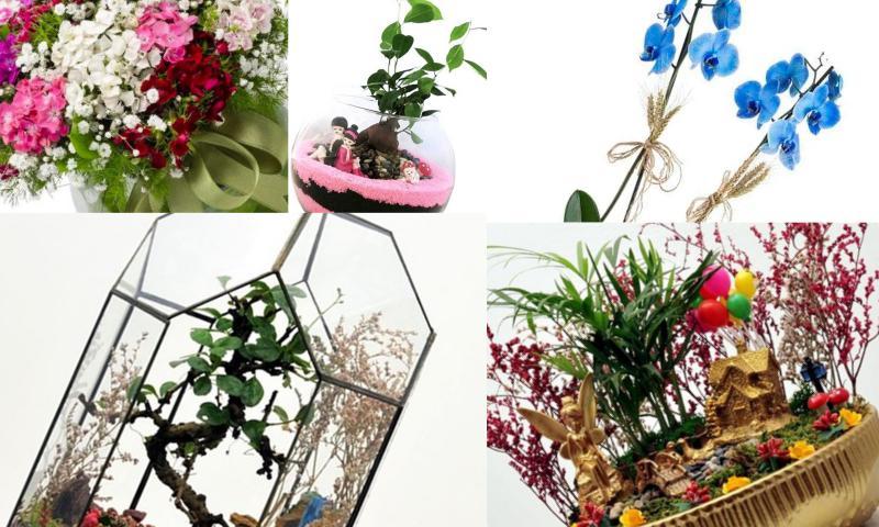 Online Canlı Çiçek Siparişi İmkanından Yararlanın
